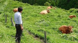 熊本県あか牛